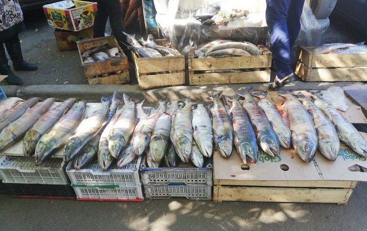 Лососевых нет: в поисках доступной рыбы в Хабаровске