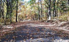 Одеваемся потеплее: погода на октябрь в Хабаровске