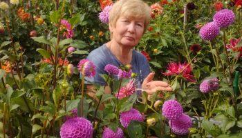 Цветы в усадьбе Инны Кутузовой