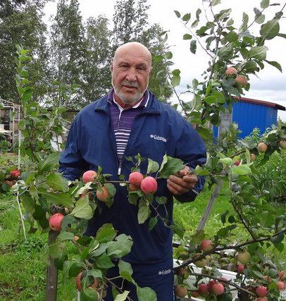 Любительский сад Юрия Стахнёва