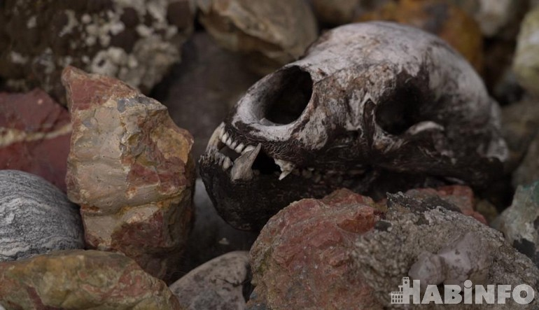 Голубая яшма, чароит и лабрадориты: сад камней Александра Шуваева