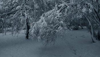 Переходим на «минус»: погода на ноябрь в Хабаровске