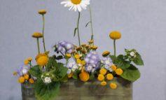 Простая икебана для дачи от флориста Веры Жулидовой