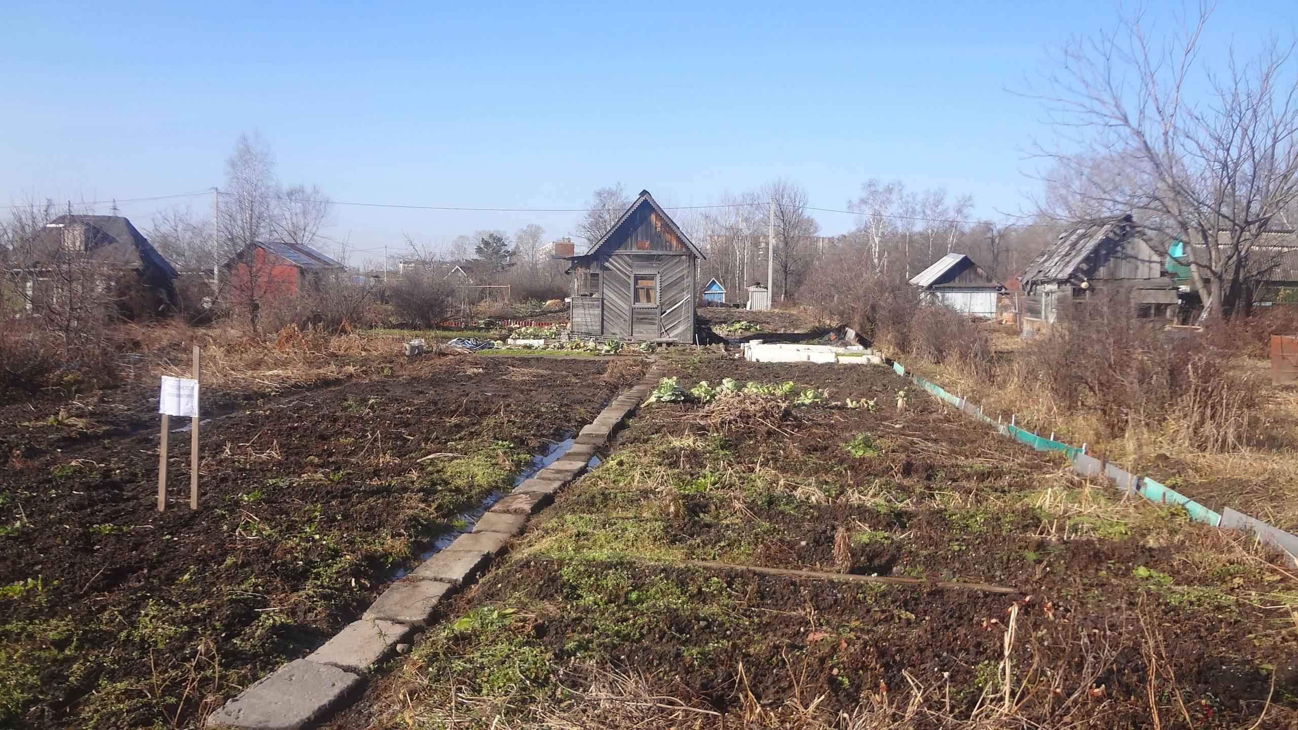 Нужны ли хабаровским садоводам безденежные чиновничьи конкурсы?