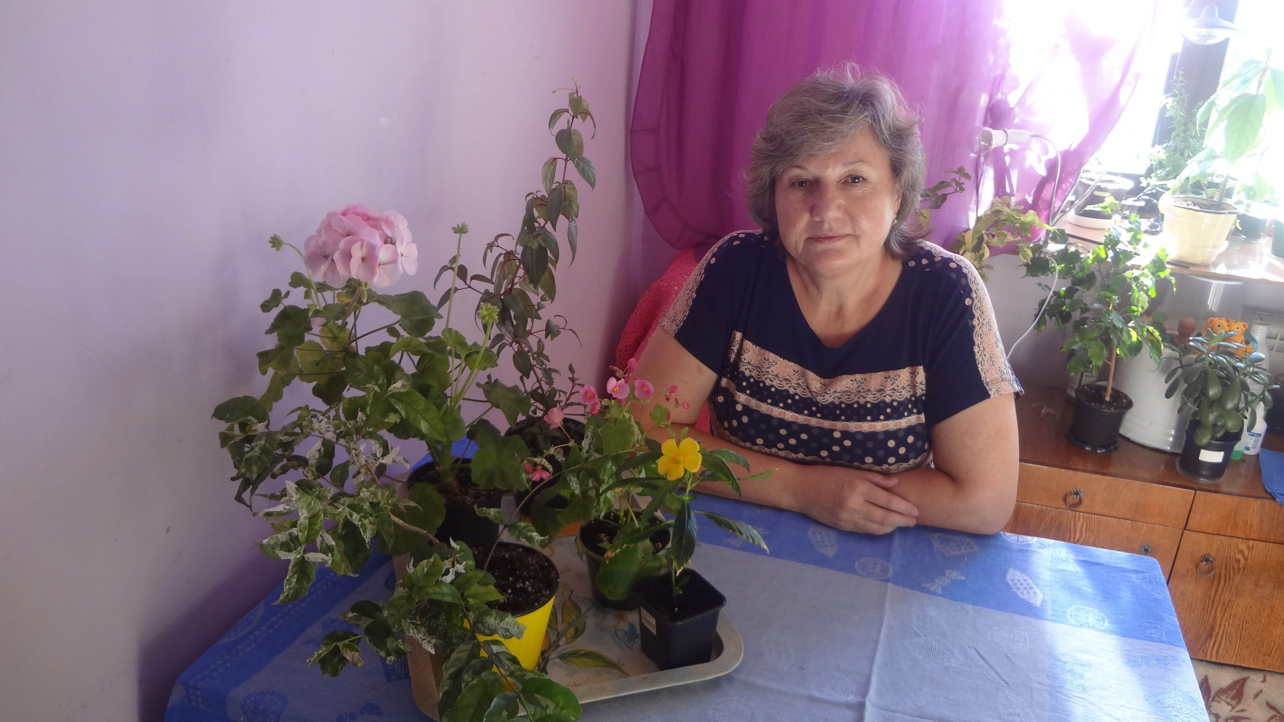 Хабаровчанка Людмила Каляева - о секретах комнатных цветов