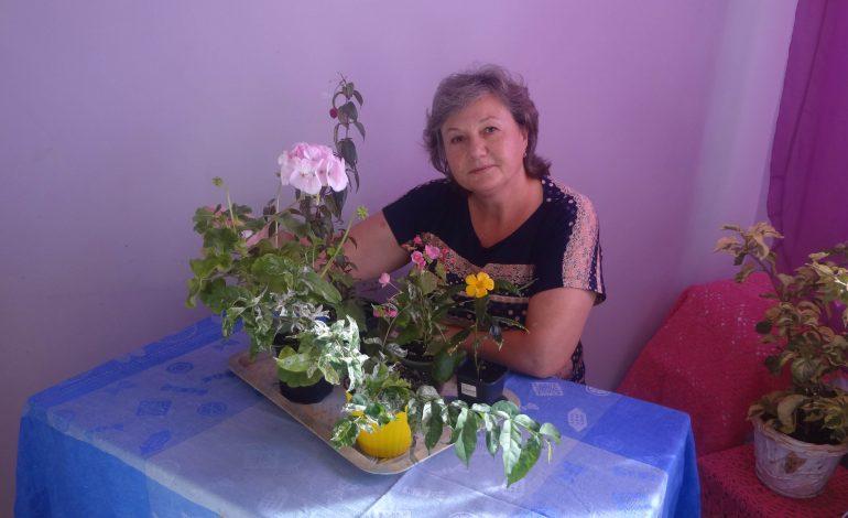 Хабаровчанка Людмила Каляева – о секретах комнатных цветов