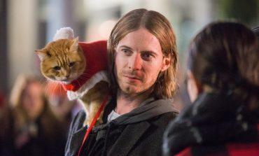 «Рождество кота Боба» и ещё два рождественских фильма