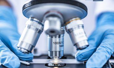 Для чего нужно регулярно проходить исследование кала на скрытую кровь и определение, а/гена Нр