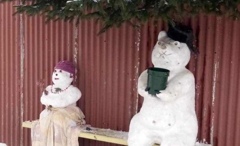 СНТ «Связист»: к снегу тянется рука, я леплю снеговика