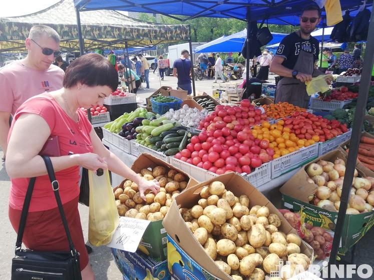 Чем будут торговать летом на улицах Хабаровска
