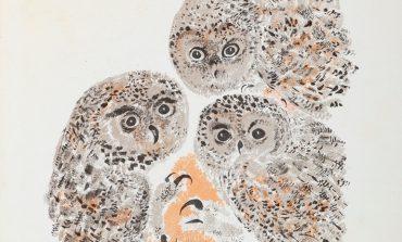 Детский художник Никита Чарушин в Дальневосточном художественном музее