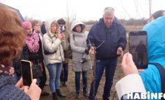 Мастер-класс от Олега Михайличенко: как прививать растения