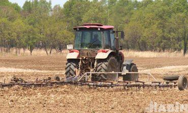 """""""Что у коровы на языке..."""" Проблемы хабаровских сельхозпроизводителей"""