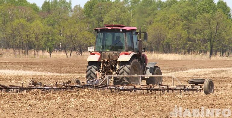 «Что у коровы на языке…» Проблемы хабаровских сельхозпроизводителей