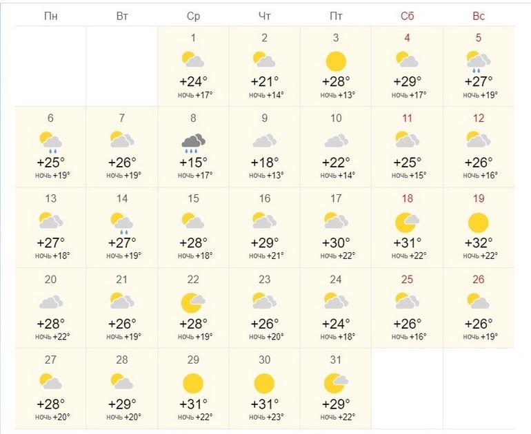 Жаркий и, возможно, дождливый: погода на июль в Хабаровске