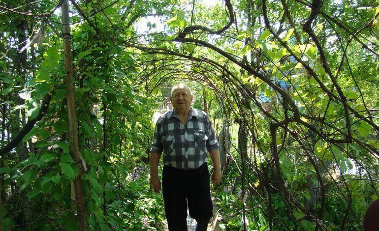 Дачная история хабаровчанина Николая Шевченко