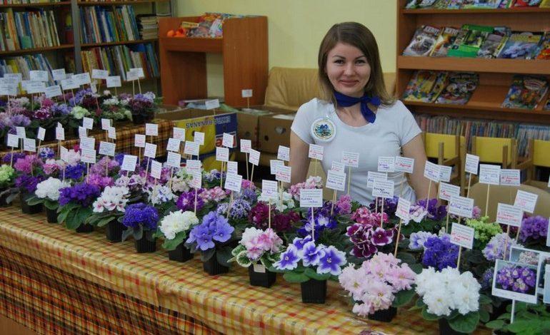 Елена Хад: очень люблю эти нежные комнатные цветы – фиалки