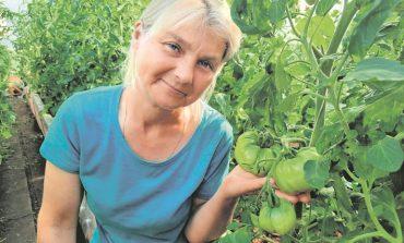 Максимально поможем растениям и увеличим урожай