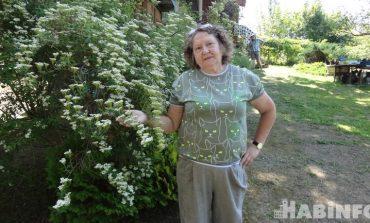 Семейный питомник «Хехцирский сад»