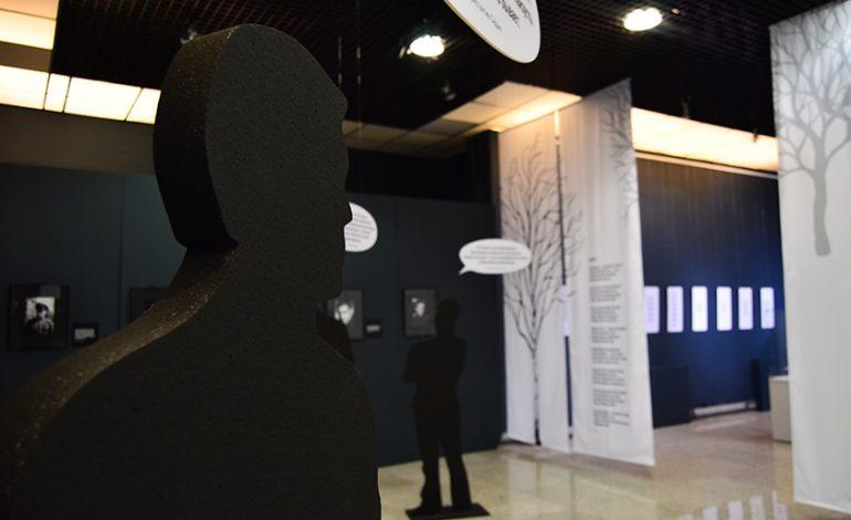 «Лучше всего скажут обо мне стихи…»: выставка Петра Комарова в Гродековском музее