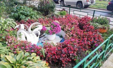 Жара отступает неохотно: погода на август в Хабаровске