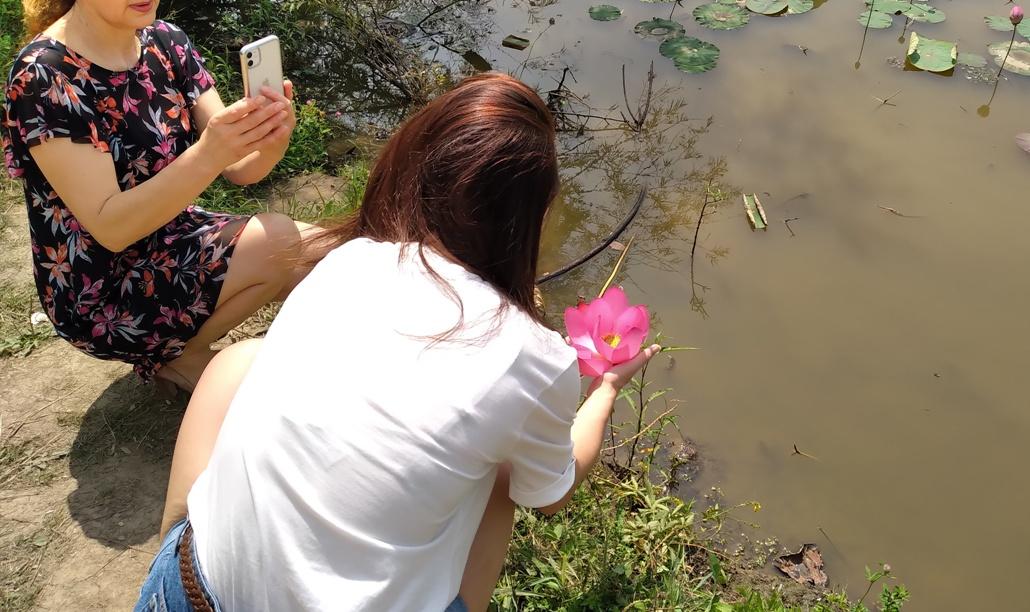 озеро лотосов гаровка