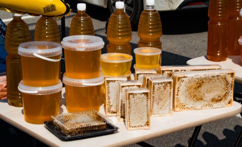 Коли мёд, так и ложку: «Медовый спас» в Хабаровске