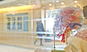Если постоянно болит голова: шесть вопросов неврологу