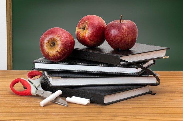 Девять советов молодому учителю от хабаровского преподавателя