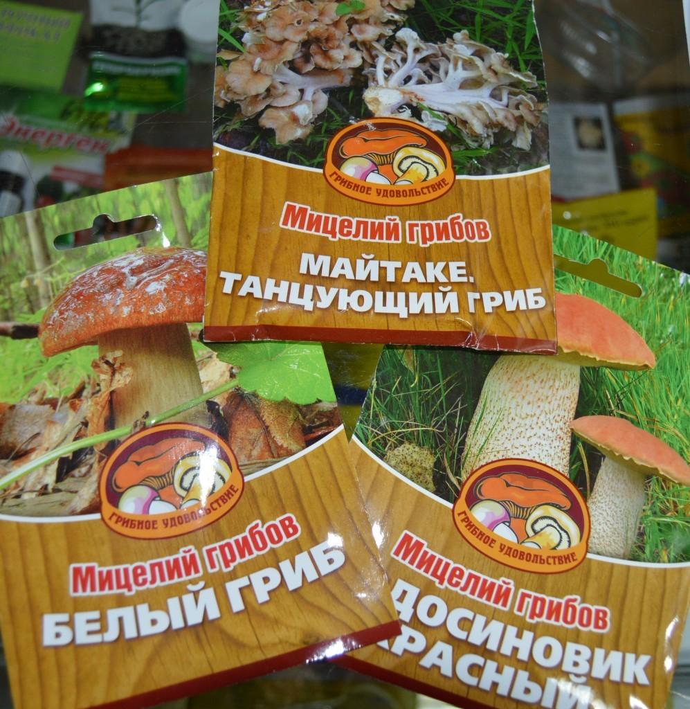Вот в таких упаковках с подробной инструкцией можно приобрести мицелий лесных грибов.