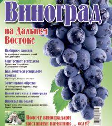 Виноград на Дальнем Востоке