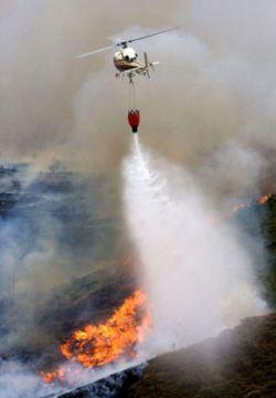 Спасение леса с вертолетов и самолетов – это бесполезное занятие.