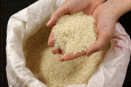 Россия – один из главных импортеров риса из КНР