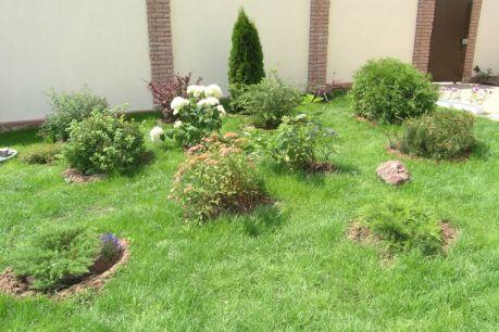 Самый же неприхотливый газон - луговой. Здесь допустимы сорняки и неоднородность цвета травы.  Косить такие газоны можно на высоту 7-10 и даже 15 см.