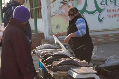 Фото Екатерины Подпенко: Количество рыбы у уличных торговцев заметно сократилось