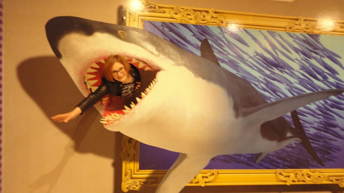 выставка 3d картин акула фото