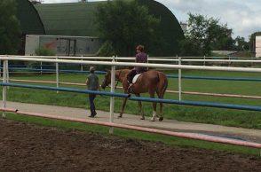 Первая поездка на лошади прошла успешно