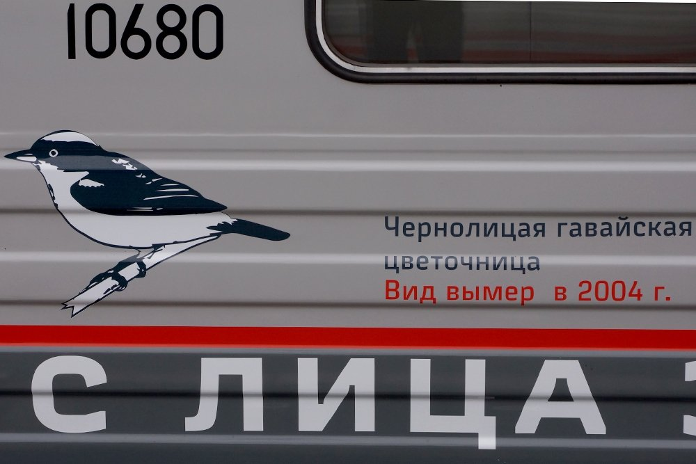 5_64a80eff