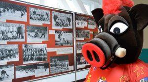 Клубный талисман - кабан Жора - в обновленном клубном музее. Фото ХК «СКА-Нефтяник»