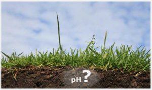Определяем рН почвы