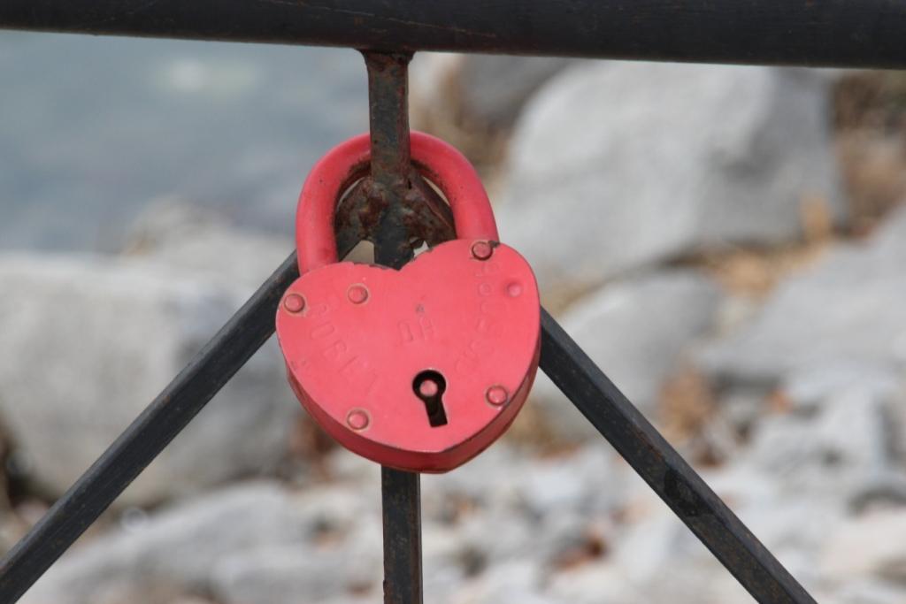 «Дерево любви» укоренится в хабаровском парке «Северный»