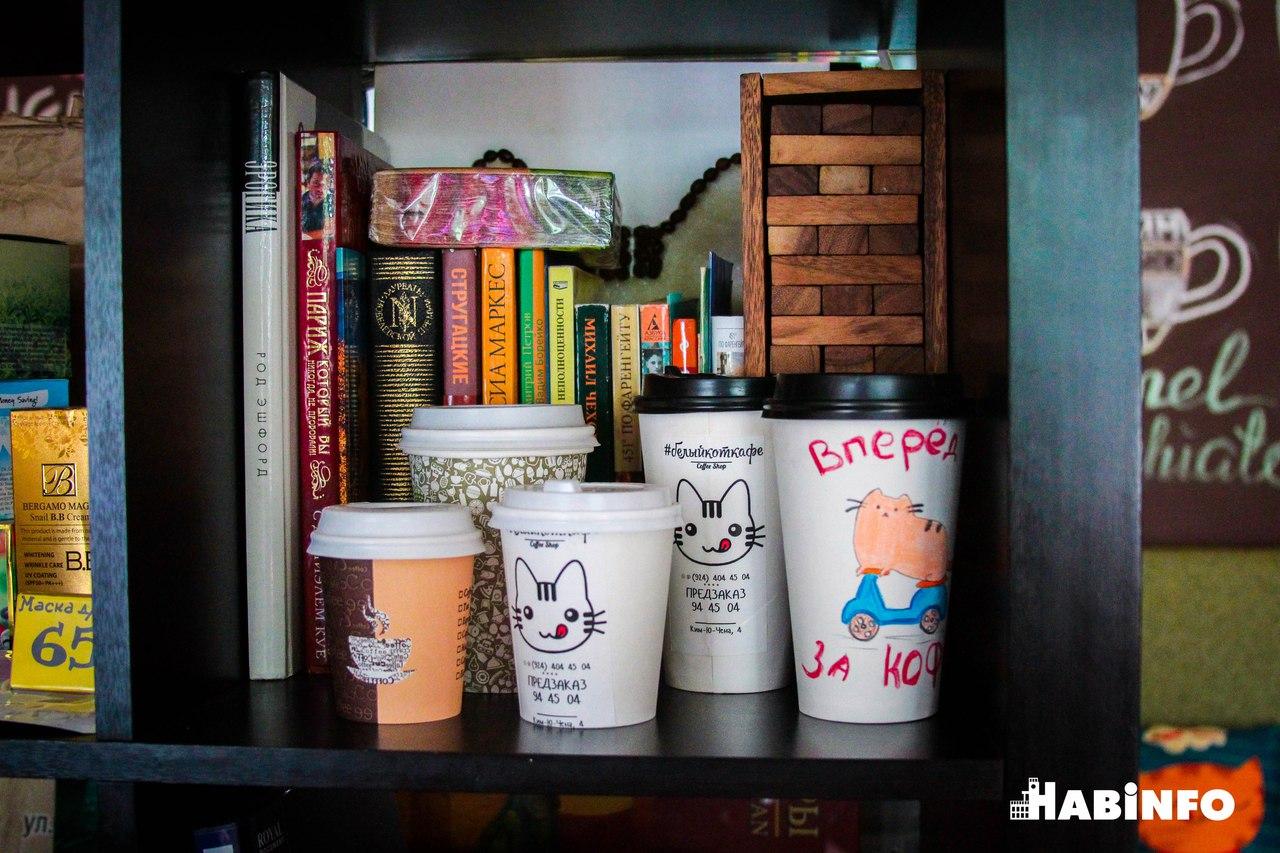 """Белый кот: """"пушистая"""" кофейня в Хабаровске"""
