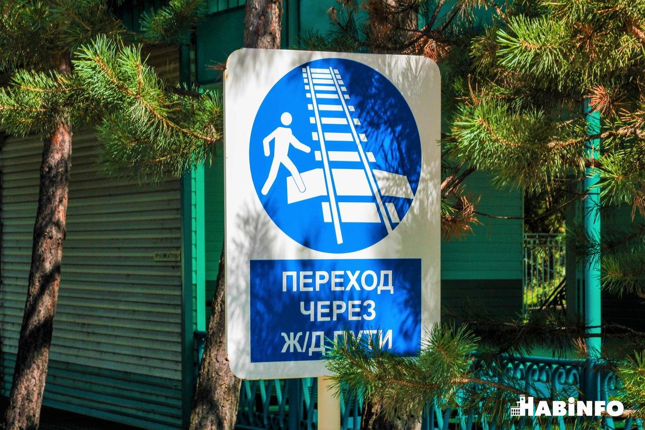 детская железная дорога школа