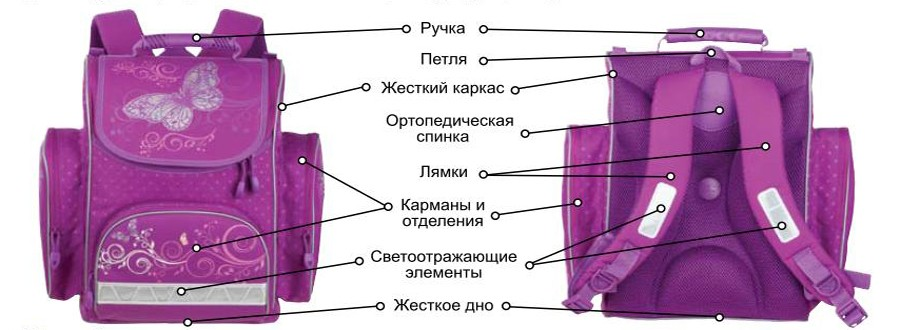 Тяжелая ноша: сколько должен весить портфель хабаровского школьника