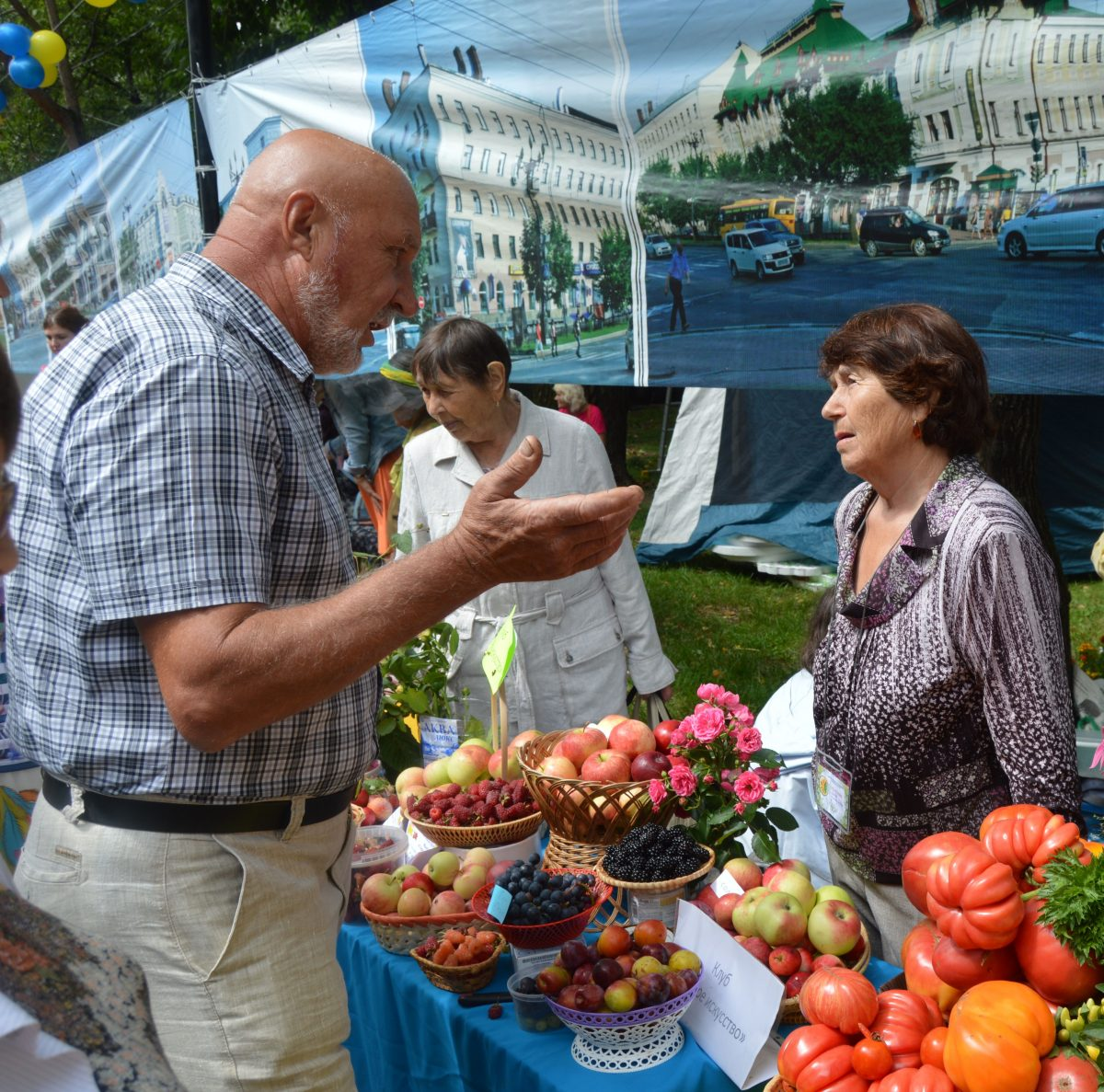 Выставка Городские цветы 2017 хабаровск